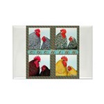 Cochins! Rectangle Magnet (100 pack)