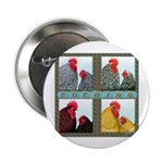 "Cochins! 2.25"" Button (10 pack)"