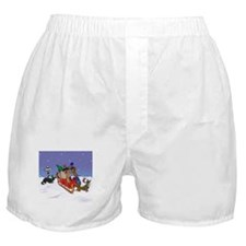 North Pole Dachshunds Boxer Shorts
