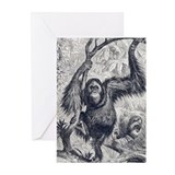 Orangutan in the wild Greeting Cards (Pk of 20)