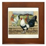 Duckwing Bantam Chickens Framed Tile