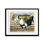 Duckwing Bantam Chickens Framed Panel Print