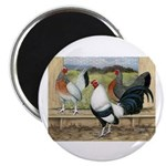 "Duckwing Bantam Chickens 2.25"" Magnet (10 pac"