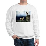 Llama Encounter Sweatshirt