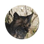 Bobcat in Brush Ornament (Round)