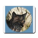 Bobcat in Brush Mousepad