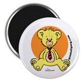 Yellow Teddy Bear! Magnet