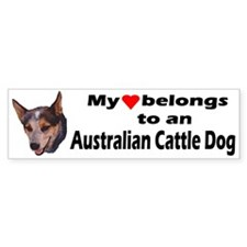 Australian Cattle Dog Bumper Bumper Sticker