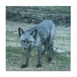 Silver Fox Tile Coaster