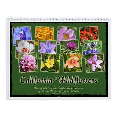 California Wildflower Wall Calendar