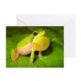 Eastern Sedge Frog Greeting Cards (Pk of 10)