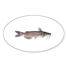 Channel Catfish Oval Decal