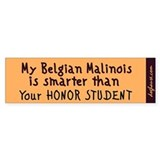 Belgian Malinois Bumper Car Sticker