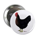 "Black Chicken Hen 2.25"" Button (10 pack)"