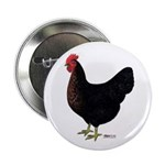 "Black Chicken Hen 2.25"" Button"
