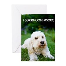 Labradoodlicious Labradoodle Greeting Cards (Pk of