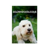 Goldendoodlicious Goldendoodle Rectangle Magnet