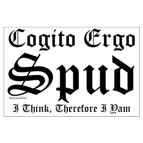 Cogito Large Poster