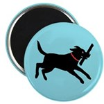 Playful Black Lab 2.25&quot; Magnet (10 pack)