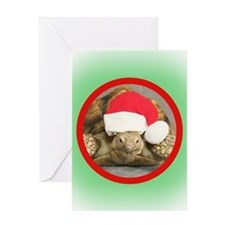 Tortoise, round image Greeting Card