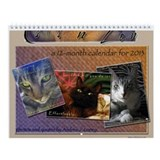 Cats n Zen Wall Calendar