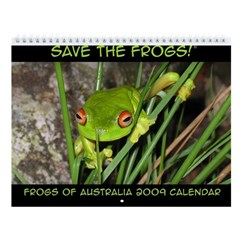 Frogs of Australia 2009 Wall Calendar