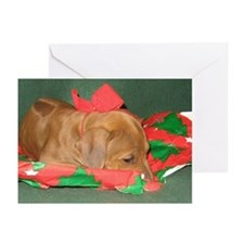 Rhodesian Ridgeback Puppy Cards (Pk of 10)