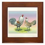 Ameraucana Chickens Pair Framed Tile