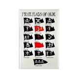 Pirate Flags- Jolly Roger Rectangle Magnet (100 pa