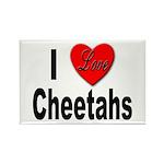 I Love Cheetahs Rectangle Magnet (10 pack)