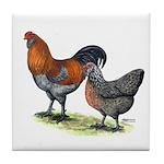Ameraucana Fowl Tile Coaster