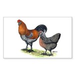 Ameraucana Fowl Rectangle Sticker 50 pk)