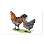 Ameraucana Fowl Rectangle Sticker 10 pk)