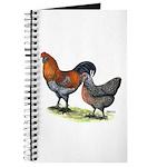 Ameraucana Fowl Journal