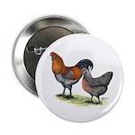 "Ameraucana Fowl 2.25"" Button"