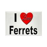 I Love Ferrets Rectangle Magnet (10 pack)