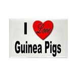 I Love Guinea Pigs Rectangle Magnet (10 pack)
