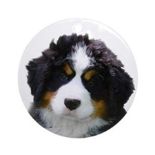 Hoosier Roos Bernese Ornament (Round)