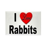 I Love Rabbits Rectangle Magnet (10 pack)