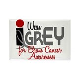 I Wear Grey For BC Awareness 32 Rectangle Magnet