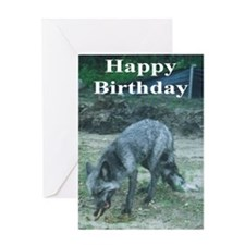 Silver Fox chewing Greeting Card