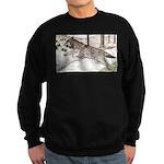 Outcome Sweatshirt (dark)