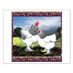 Framed Brahma Chickens Small Poster