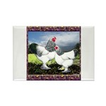 Framed Brahma Chickens Rectangle Magnet (10 pack)
