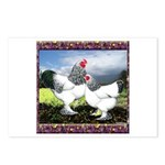 Framed Brahma Chickens Postcards (Package of 8)