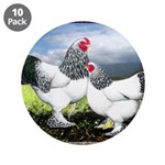 "Framed Brahma Chickens 3.5"" Button (10 pack)"
