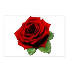 A Rose is a Rose Postcards (Package of 8)