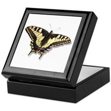 Tiger Swallowtail Butterfly Keepsake Box
