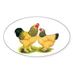 Buff Brahmas Oval Sticker (50 pk)