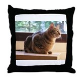 Sokoke Throw Pillow